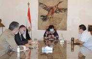 بمصر: وزير الثقافة تواصل اجتماعاتها الدورية برؤساء القطاعات لمناقشة خطة العمل عقب استئناف النشاط