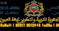 بالمغرب: الأكايمية الجهوية للتربية و التكوين لجهة العيون الساقية الحمراء تفتح أبواب المشاركة بالمهرجان الوطني الأول للمسرح الفردي (المونودراما)